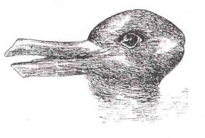 Duck/Rabbit: Jastrow, J. (1899). The mind's eye. Popular Science Monthly, 54, 299-312. http://en.wikipedia.org/wiki/File:Duck-Rabbit_illusion.jpg