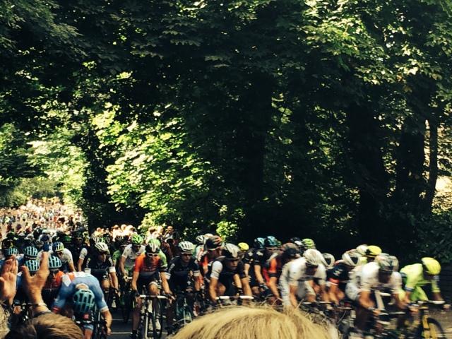 Tour de France peloton 2014 by @kshjensen
